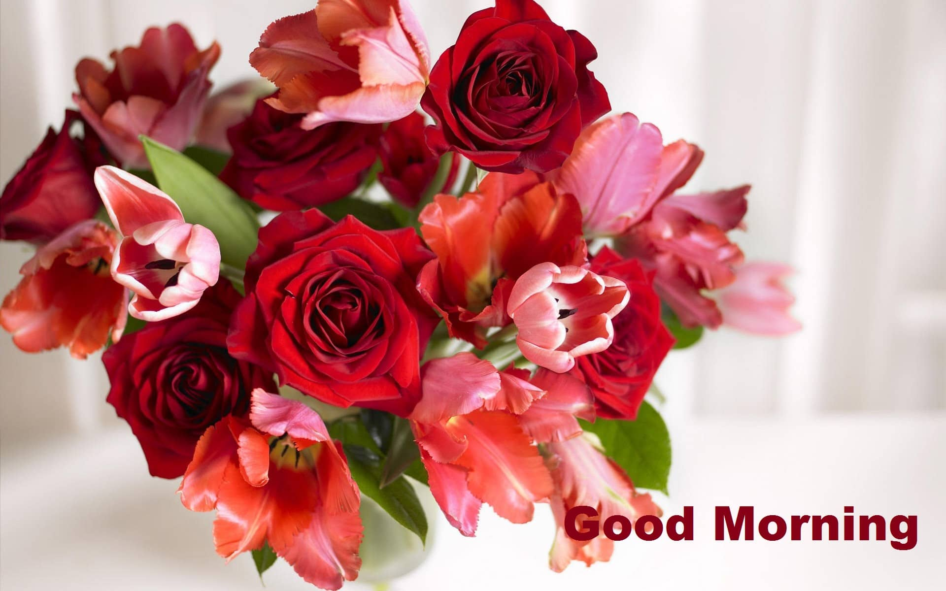Best Good Morning with Rose Flowers