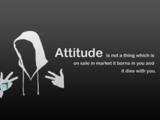 Status on Attitude and Style