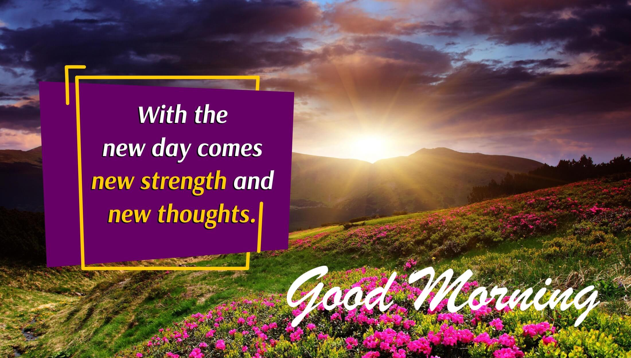 Greetings of Good Morning