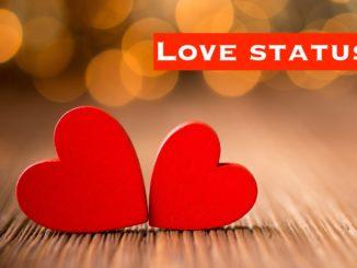 Best Love Status Ever