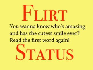 Short Flirty Status and Quotes